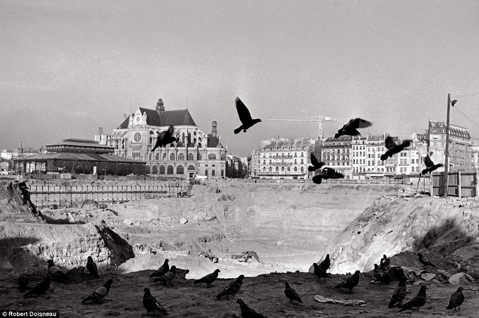 Robert Doisneau's photograph  The Birds taken in July 1974