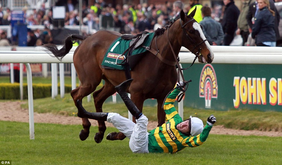 Tony McCoy hits the ground after unexpectedly falling from his horse during the warm