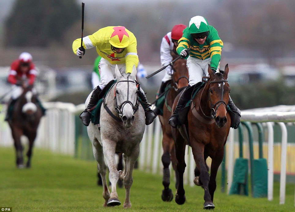 Classy performer: Neptune Collonges and Daryl Jacobs (left) beat Sunnyhillboy on the line