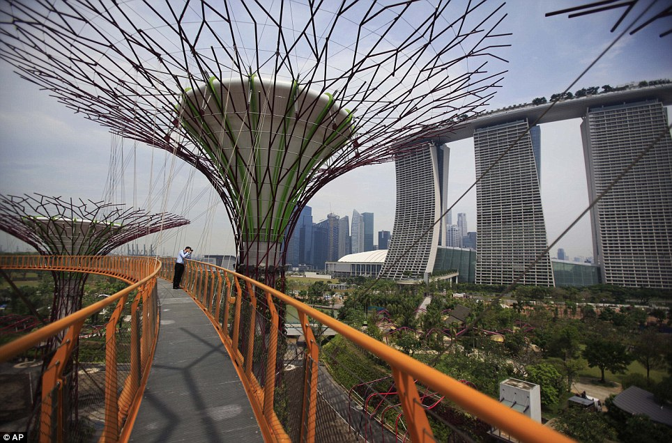 Colossal: The imposing trees have concrete trunks weighing hundreds of tonnes, while thousands of thick wire rods have been used to create artificial branches and canopies