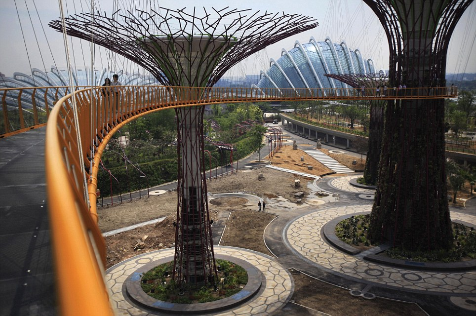 Horticultural heaven: The entire structure will house a cluster of green conservatories when it is completed where, inside, visitors can find plants from all over the world. The park will also become home to the Singapore Garden Festival