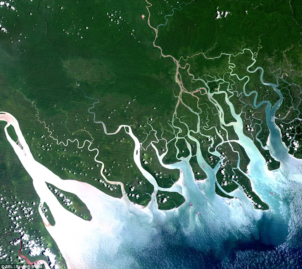 The Gulf of Papua, Papua New Guinea: The 400-kilometer-wide region holds a sea area of approximately 35,000km squared, with the coasts surrounded by coastal mangrove forests