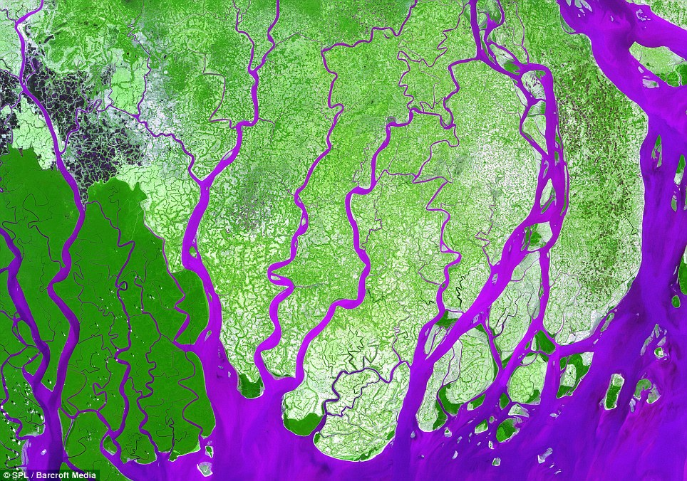 The delta in Ganges River, Bangladesh, with false colours serving as a contrast between land and water