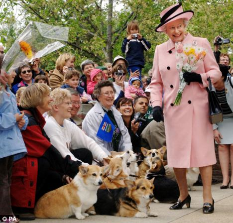 The Queen's Jubilee year has seen an upsurge in interest in her favourite dog, according to the Kennel Club