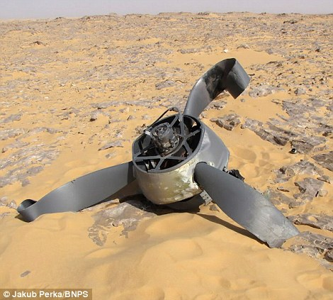 Scattered remains: The propeller of the Second World War plane
