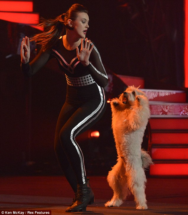 Impressive: Ashleigh and Pudsey wowed the viewers and the judges with their routine to the Mission: Impossible theme. But could your dog perform the same moves?
