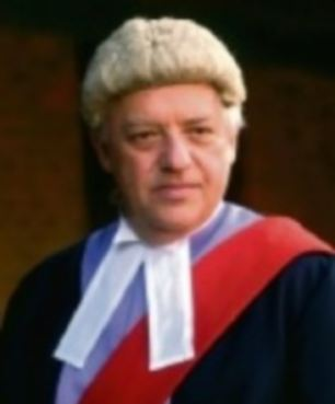 Warnings: Judge Peter Hughes said lessons needed to be learned across society after Miah's jailing