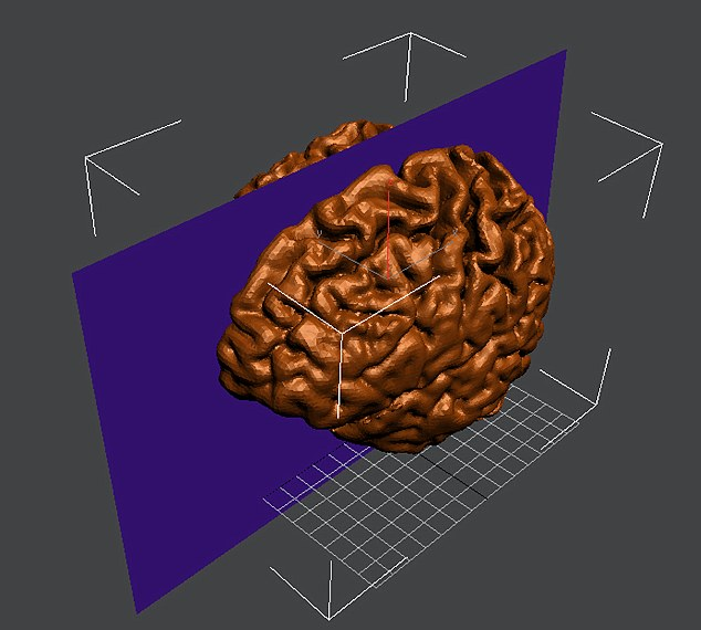 A 3D MRI scan was used to create a mould which was then filled with chocolate
