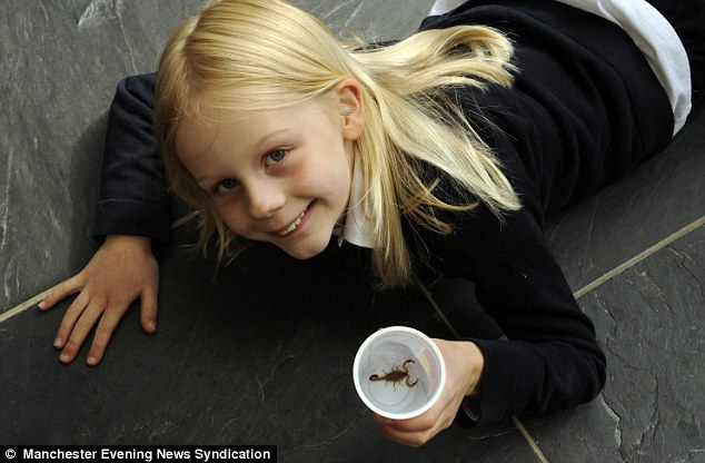 Eight-year-old Mary Henderson holds the stowaway scorpion that she found in her bedroom in Dalkeith, Midlothian,after a break in the British Virgin Islands