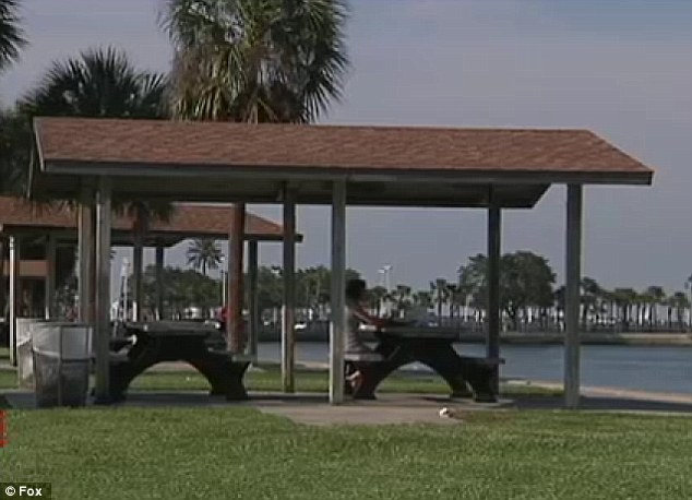 Gathering: Police say that on Saturday, Harkins gathered six boys and one girl in a park near the St. Petersburg Pier