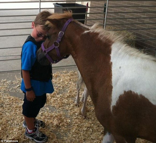 Loving: Holden Gothia, pictured with a horse that was being auctioned at his benefit concert, is unaware of the true extent of his injuries