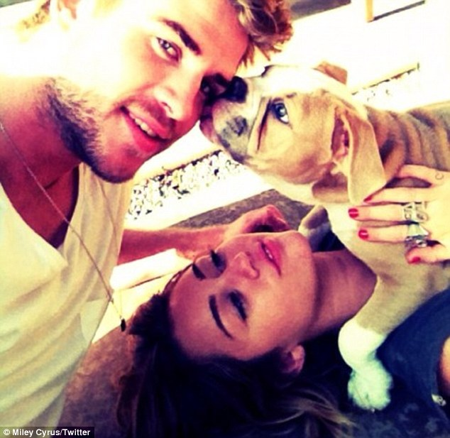 Happy family: Miley also shared this picture of her, Liam and her dog on her Twitter page