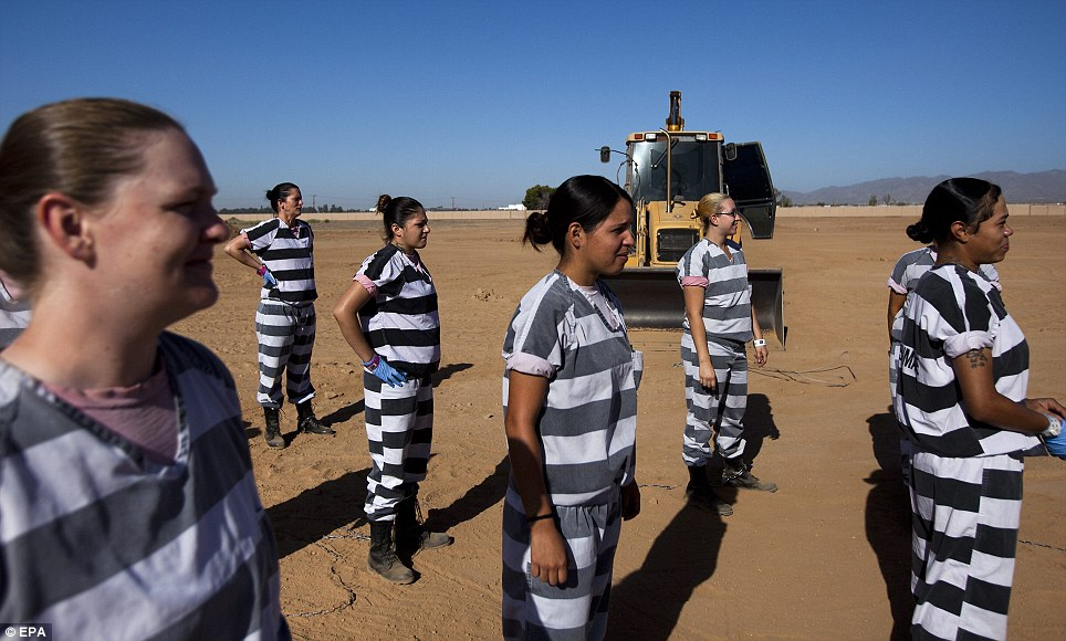 Morbid task: The chain gang, in their standard striped shirts and pants, prepares to bury unclaimed bodies at White Tanks Cemetery