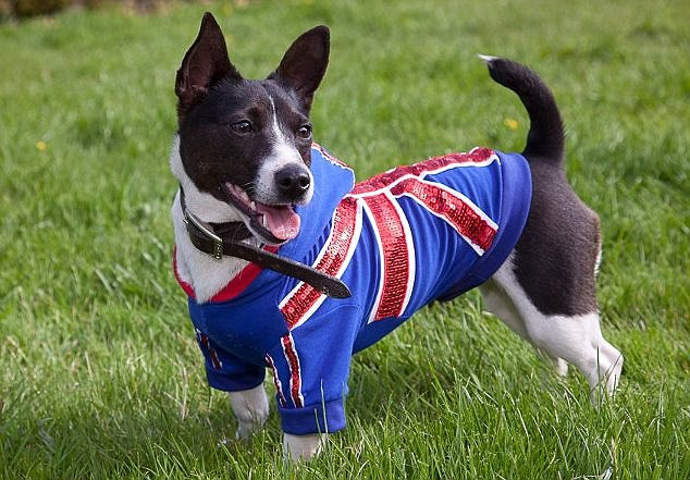 Donna has even received an order from New Zealand for her patriotic outfits