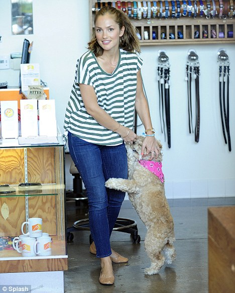 Canine cutie: Chewy jumped up on his owner as soon as Minka walked into the store
