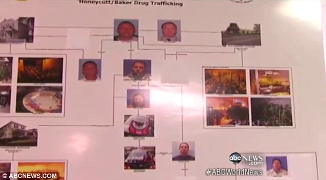 Probe: The arrests were the result of a year-long investigation in to the massive marijuana operation