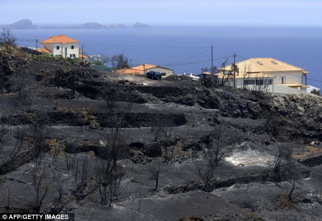 Saved from destruction: Blackened hillsides are seen in front of saved homes after a fire in Santa Cruz , some 20 km from Funchal, on Madeira Island. Fires raged around the towns of Calheta, Ribeira Brava and in Santa Cruz