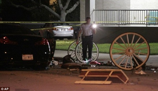 Equine victim: The horse drawing the carriage suffered a cut to its leg and was later returned to its owner