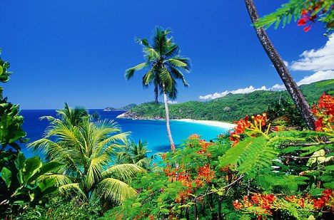 Exotic: The Seychelles is just one of the tropical climates being considered for the new base