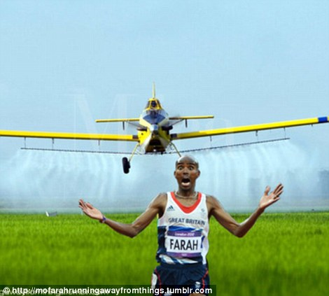 Heads up! Mo is chased by a landing airplane