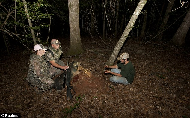 Happy snap: Guide Hunter Pritchett, right, takes a photo of Jason Weaver and his wife Kristie with the 60 pound hog