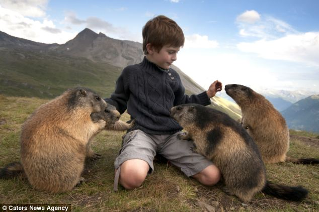 Furry friends; The schoolboy from Innsbruck first met the clan of marmots four years ago on a family holiday and has returned every year since