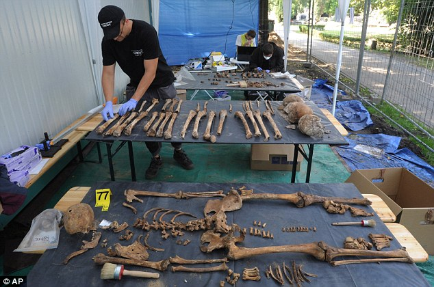 Patience: A forensic worker sorts through bones during work at the cemetery. It will take several months to determine if Pilecki, who was killed by a bullet to the back of his head, is among them