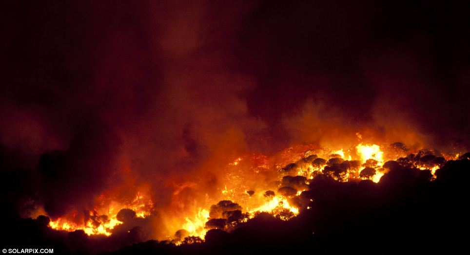 Power: Dry trees and foliage have provided fuel for the raging blaze making it difficult to bring under control