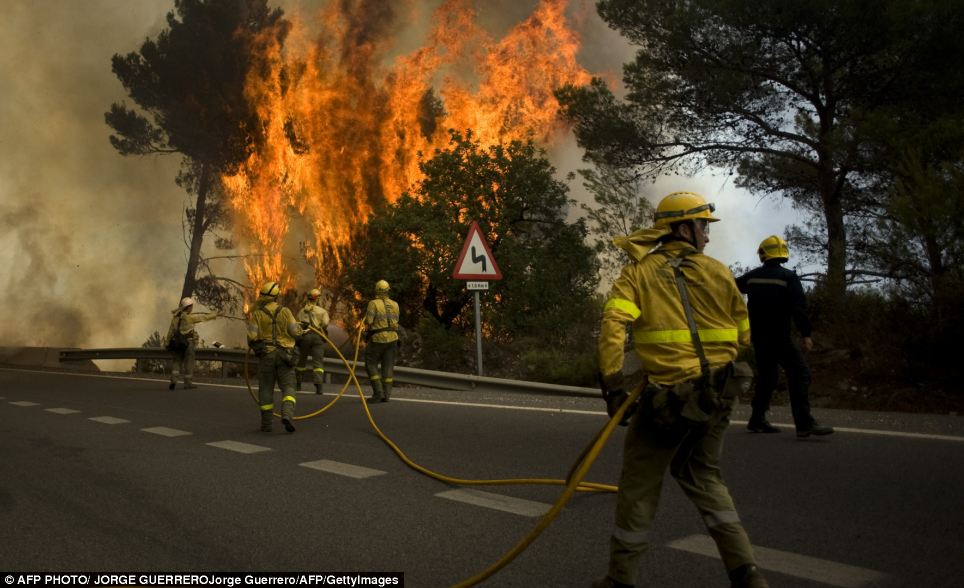 Inferno: Firefighters battle desperately to extinguish the flames in Ojen, near Malaga in southern Spain
