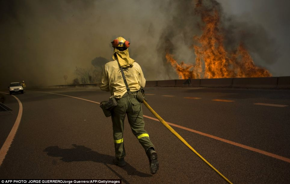 Danger: Main roads in the region were closed to traffic as the fires spread rapidly towards the coast