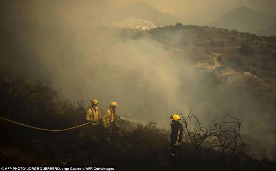 Aftermath: Fire crew douse the charred earth after the blaze had passed through. Smoke still drifts up from the embers