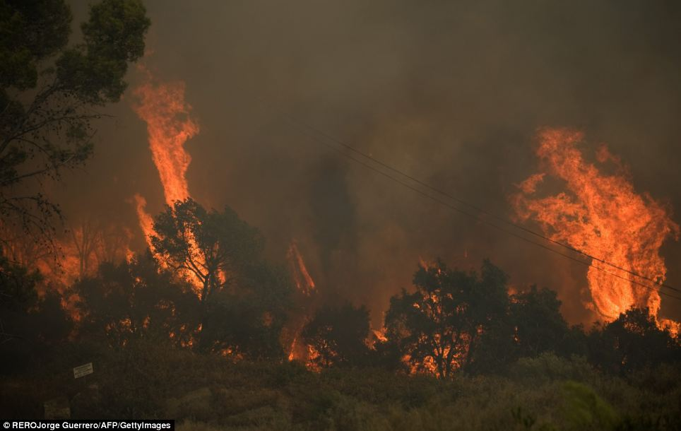 AFP PHOTO/ JORGE GUERHeat: The sky is turned black with thick clouds of smoke as more woodland catches fire in Ojen