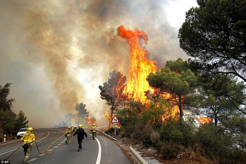 Battle: Fireman try to control the flames in a forest fire as trees are engulfed in flames next to a road in Ojen, southern Spain