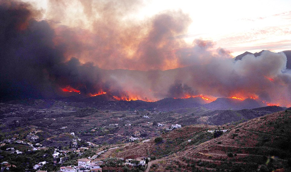 Out of control: The fire near Coin is seen near houses in a forest at Barranco Blanco (White Ravine)