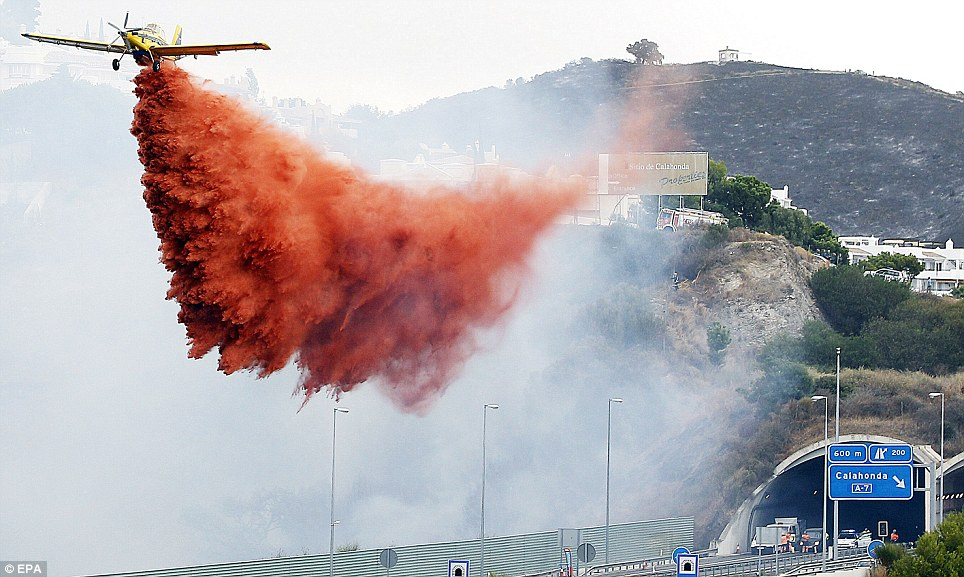 Fight from the air: A light aircraft sprays an extinguishing agent over a forest fire along a motorway in Calahonda, Malaga, southern Spain
