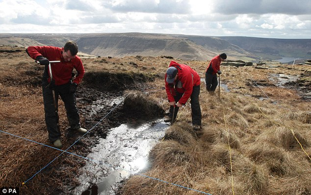 Torment: Many attempts have been made to find the remains of Keith Bennett on Saddleworth Moor, but without success