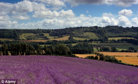 Speaking at the weekend, the Chancellor raised the prospect that developers could build on green belt land, provided other areas of land were designated for protection