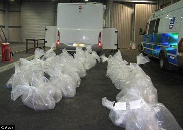 What a (useless) haul: The bags of fake cannabis meant the pair only got a jail sentence for their criminal efforts