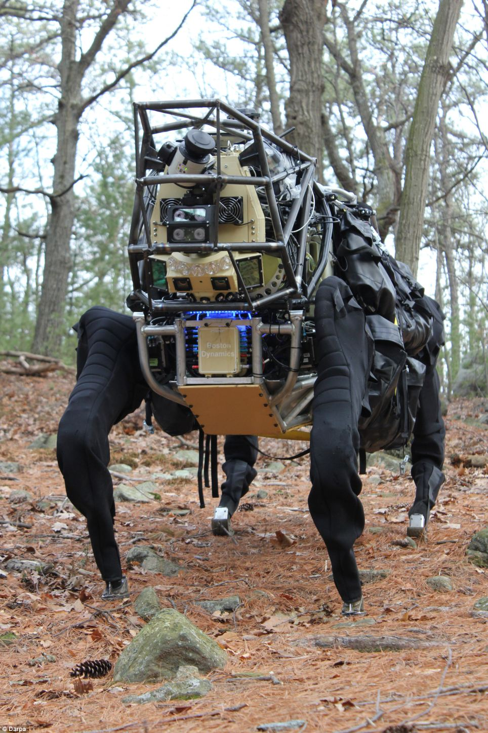 Darpa's AlphaDog has already been tested in woods, and in December will take part in Marine exercises
