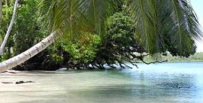 Tavanipupu Private Island Resort,