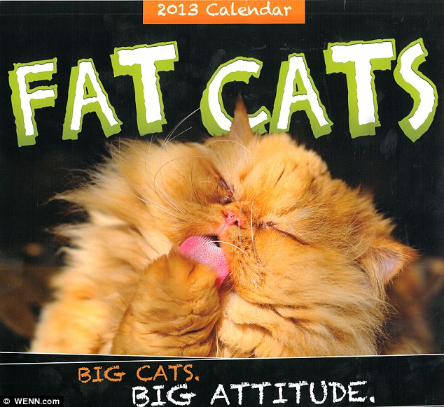 The calendar has returned for 2013 after it became a cult hit last year