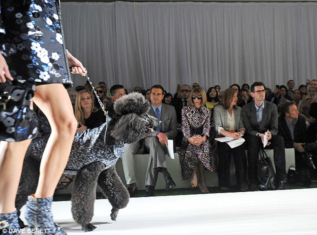Taking it in: Vogue editor Anna Wintour watched the action from the front row
