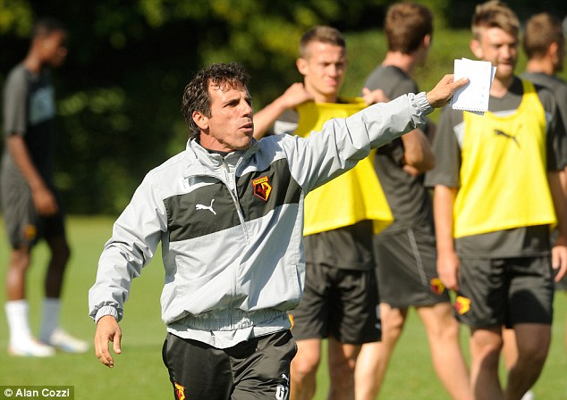 A recipe for success? Gianfranco Zola's Watford are 20th in the Championship