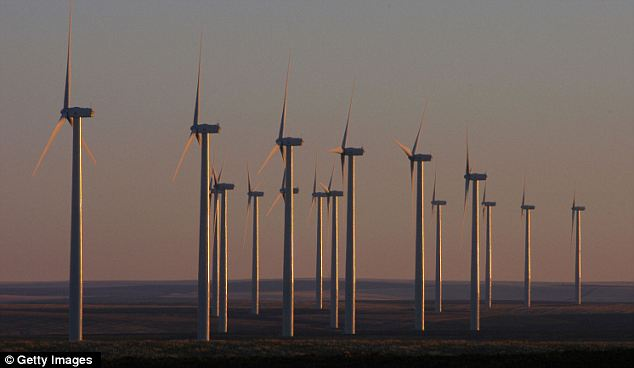 Sprouting up: Wind farms are being built in the Pacific Northwest, like this one in Wasco, Oregon, but Obama considered the proposed far to be too close to a naval training base