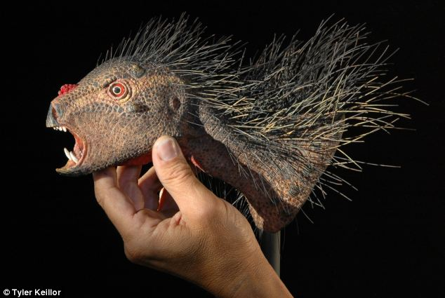 The researchers worked with a model maker to create the head of the 'vampire dwarf' dinosaur.