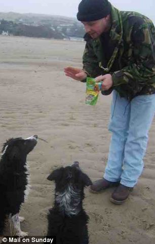 Mark Bridger playing with two dogs on a beach