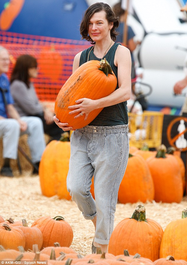 Getting her hands dirty: Milla got to grips with the pumpkins during her outing