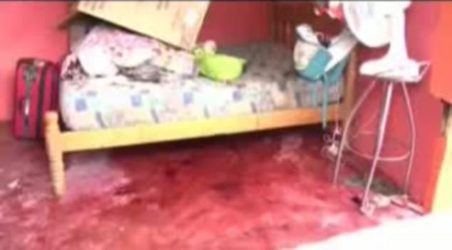 Crime scene: Blood can be seen on the floor on dos Santos' home where she attacked her friend