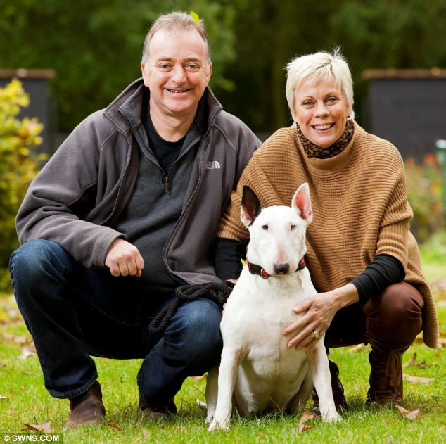 Wonder dog: Nellie poses with her owners Janey Auchincloss and John Perkins, from Lavenham, Suffolk