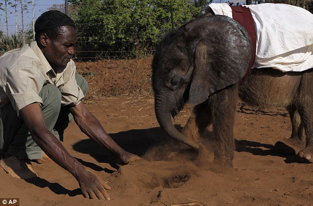 Play time: Moses plays in a dust pit with carer Matimat Julius
